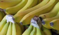 Faites mûrir des bananes vertes en une heure grâce à cette simple astuce